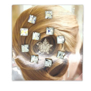 Haar Diamanten / Hair Diamonds  (10 stk)